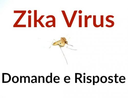 Virus Zika e Gravidanza: Domande e Risposte
